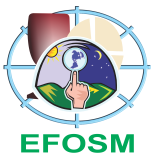 EFOSM - Padrão